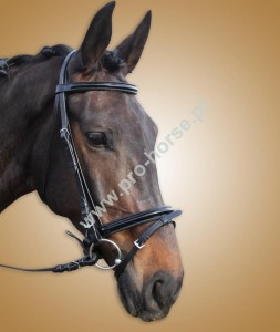 ea2bef9c76947 Skórzane - Pro-horse Sklep Jeździecki